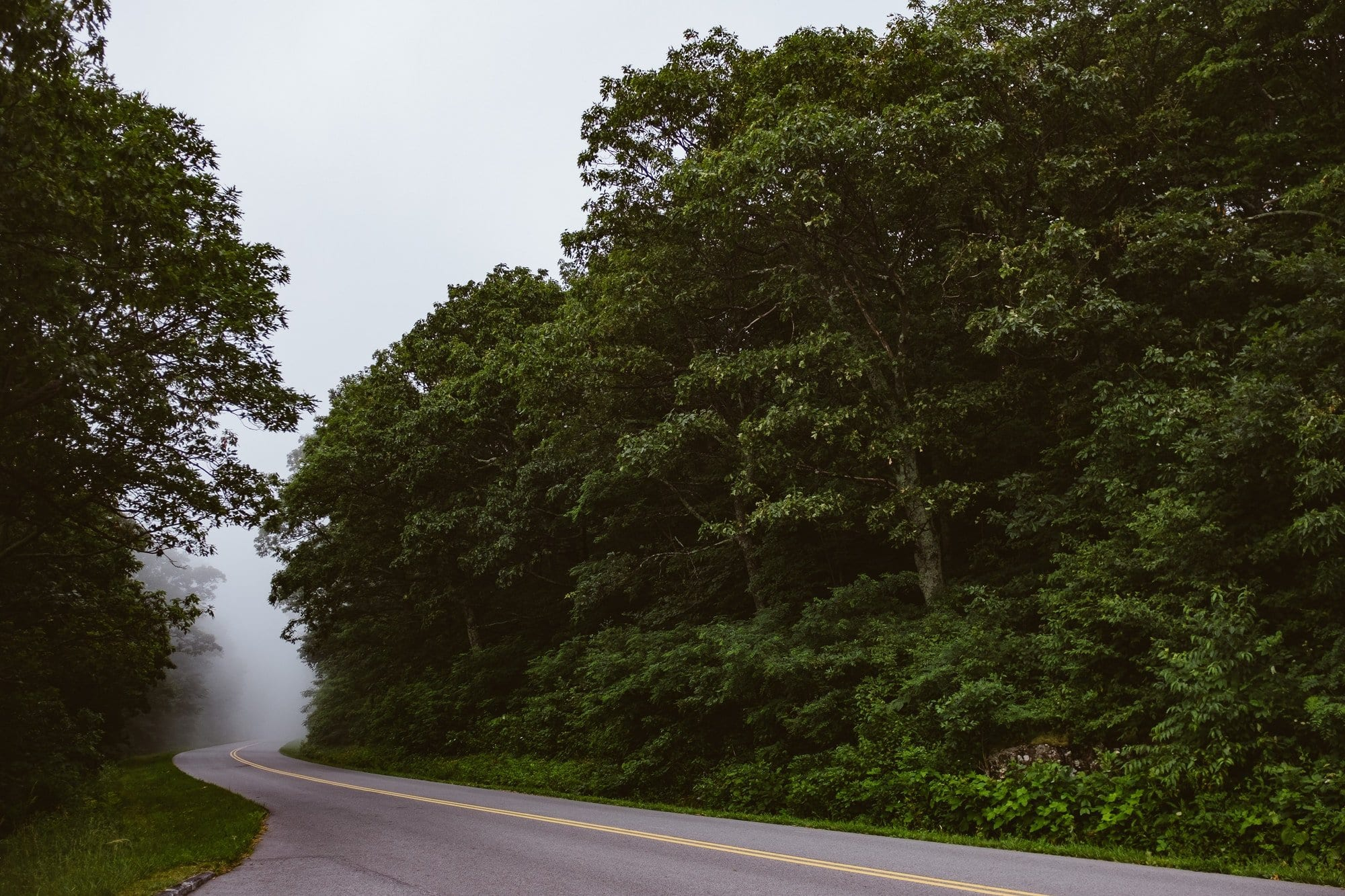 Driving on country roads: how to spot hazards and stay safe